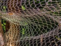 Recinto rotto della cavo-maglia Fotografia Stock