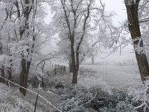 Recinto rustico circondato dagli alberi e dai campi gelidi Immagini Stock