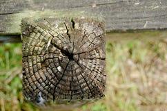 Recinto stagionato alla traccia di Sammamish del lago Fotografia Stock Libera da Diritti
