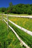 Recinto tradizionale di un giardino alpino Fotografia Stock