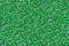 Recinto verde del Buxus Fotografia Stock