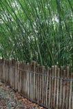 Recinzione del legno graziosa con il fondo di bambù Fotografie Stock