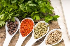 Recipe book background. Diversity of spices with bunch of parsley. Stock Images