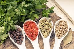 Recipe book background. Diversity of spices with bunch of parsley. Stock Photos