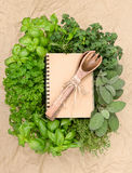 Recipe book with variety fresh herbs Stock Photography