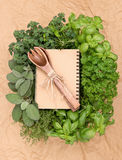 Recipe book with variety fresh herbs Royalty Free Stock Image