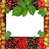 Recipe card on background of fresh berries. Recipe card on the background of fresh berries raspberries, gooseberries, currants. Top view Stock Image