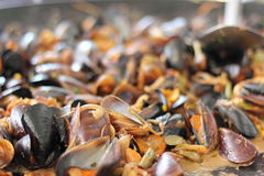 Recipe for mussels in the shell Royalty Free Stock Photography