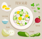 Recipe salad with ingredients. Vector. Vector illustration of cooking salad with egg, radish, cucumber, sour cream, onion, parsley, dill. Recipe of fresh salad Stock Photo