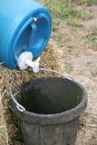 Recipiente da água imagens de stock