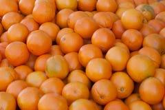 Recipiente das laranjas Imagem de Stock Royalty Free