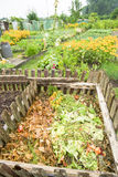 Recipiente di composta del giardino Immagine Stock Libera da Diritti