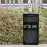 Recipiente di riciclaggio con Aspen Trees Immagine Stock