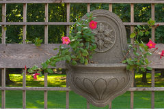 Recipiente do jardim de suspensão Imagem de Stock