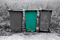 Recipiente verde isolato dei rifiuti fotografia stock