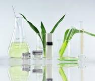 Recipientes cosméticos da garrafa com as folhas ervais verdes e produtos vidreiros científicos, pacote vazio da etiqueta para o m fotografia de stock