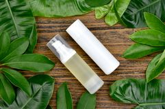 Recipientes cosméticos da garrafa com as folhas ervais verdes, pacote vazio da etiqueta para o modelo de marcagem com ferro quent imagens de stock