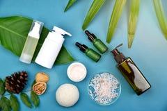 Recipientes cosméticos da garrafa no fundo erval verde das folhas, etiqueta vazia para o modelo de marcagem com ferro quente Foto de Stock