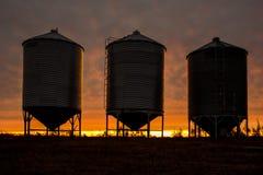 Recipienti d'acciaio del grano Immagine Stock