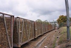 Recipienti del treno della canna da zucchero Fotografia Stock Libera da Diritti