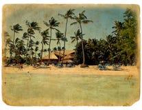 Reclínese sobre la playa, sillas de salón, palmeras Imagen de archivo libre de regalías