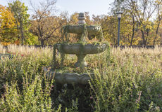 Reclamation of a Fountain. An over grown fountain in Minnehaha Park in Minneapolis, Minnesota Royalty Free Stock Photos