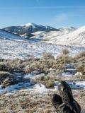 Reclinación en montañas nevosas en España Imagenes de archivo