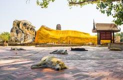 The reclining Buddha, Ayutthaya, Thailand. The reclining Buddha and sleeping dogs, Ayutthaya, Thailand royalty free stock image