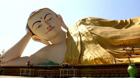 Reclining Buddha Monument stock video
