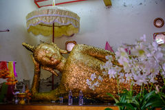 Reclining old buddha gold statue in Wat Sri maha pho Temple ancient Temple Stock Photography