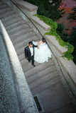 Recém-casados que andam abaixo das etapas de pedra Fotos de Stock Royalty Free
