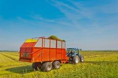 Recogida de la hierba con el carro del alimentador y del ensilaje Imagen de archivo