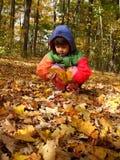 Recogida de las hojas de otoño Imágenes de archivo libres de regalías