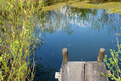 Recoin confortable à un étang de source Photo stock