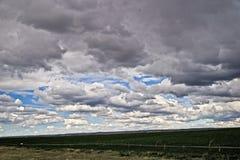 Recolectando las nubes anuncie una tormenta del verano en Colorado rural foto de archivo libre de regalías