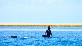 Recolhendo mexilhões com maré baixa fotografia de stock royalty free