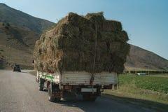 Recolhendo o feno para o gado Faça feno a colheita para o inverno Grama de sega do outono fotos de stock
