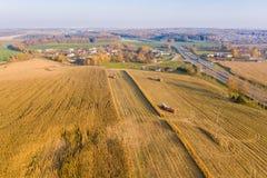 Recolhendo o milho maduro nos caminhões com os reboques no campo fotografia de stock royalty free