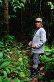 Recolhendo Yuca Foto de Stock Royalty Free
