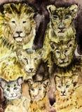 Recolhimento de sete leões ilustração do vetor