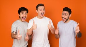 We Recommend! Happy Mates Showing Thumbs Up. Over Orange Background royalty free stock photo