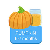 Recommended Time To Feed The Baby With Fresh Pumpkin Cartoon Info Sticker With Fresh Vegetable And Puree In Jar Royalty Free Stock Photos