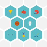 Recompensa plana de los iconos, cesta, Puck And Other Vector Elements Sistema de iconos planos de la aptitud Imagen de archivo