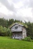 Reconstrua a casa histórica em Noruega com grama no roo Fotografia de Stock Royalty Free