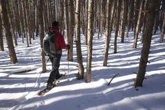 Reconstrucción al aire libre del invierno - Canadá Imágenes de archivo libres de regalías