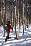 Reconstrucción al aire libre del invierno - Canadá Fotos de archivo