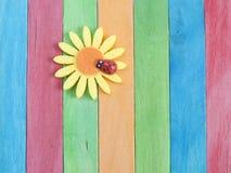 Cerca de madera con la flor y la mariquita de la margarita foto de archivo libre de regalías
