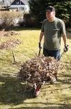 Reconstrucción que cultiva un huerto del pensionista Foto de archivo