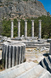 The reconstructed columns of the Temple of Athena. The ruins of the ancient Temple of Athena in the ancient Greek Ionian city of Priene (nowadays on the Royalty Free Stock Photos