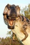 Reconstruction suggestive de rex de tyrannosaure Photos stock